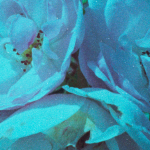 AgfaVista200_0_blue
